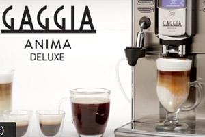 GAGGIA AnimaDX